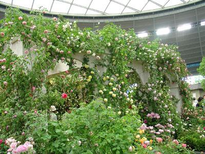 bara_gardening